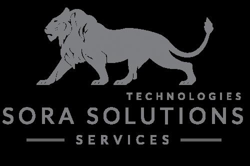 Explore Sora Solutions Servicesa